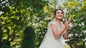 Ein kleines nettes Kätzchen sitzt auf dem Gras am Rand des Hochzeitskleides der Braut berühren Der Moment von stock footage