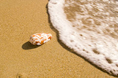 Ein kleines Ozeanoberteil Stockfoto