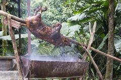 Ein kleines Schwein, das gegrillt wird lizenzfreies stockfoto