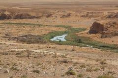 Ein kleines Wadi im Wüste Negev, Israel lizenzfreies stockbild