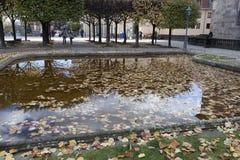 Ein kleines Wasserbecken, umfasst mit gefallenen Blättern in der alten Gleichheit Lizenzfreies Stockbild