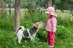 Ein Kleinkind mit einem Hund in einem Garten Stockbild