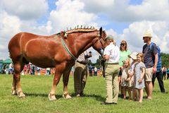 Ein Konkurrent zeigt ihr Pferd an einer Show stockfoto