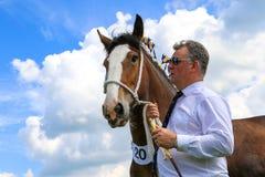 Ein Konkurrent zeigt sein Pferd an einer Show stockbild