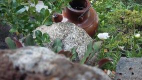 Ein Kontrast, zum im Garten zu arbeiten Felsen Stockbild