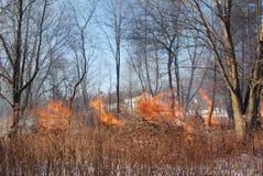 Ein kontrollierter Brand im Holz eines Winters Lizenzfreies Stockfoto