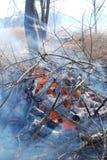 Ein kontrollierter Brand mit blauen Protokollen und orange Feuer Stockbild