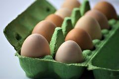 Ein Konzept Bild einiger Eier in einem Kasten Lizenzfreies Stockbild