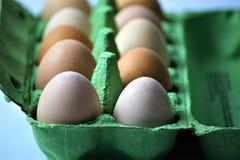 Ein Konzept Bild einiger Eier in einem Kasten Lizenzfreie Stockfotos