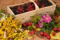 Ein Korb füllte mit reifen Beeren und einem Blumenstrauß von archivierten Blumen auf einer Holzoberfläche, die mit Hüften und Her Stockfoto