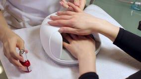 Ein Kosmetiker wendet roten Nagellack an den N?geln einer jungen Frau an L?schen des Lacks stock video
