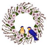 Ein Kranz von rosa Kirschblumen mit hellgrünen Blättern und jungen Weidenniederlassungen mit Frühlingsvögeln Natürlicher runder R stock abbildung