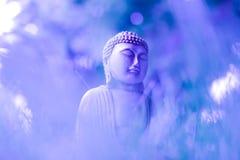 Ein kreatives Bild einer kleinen meditierenden Statue von Buddha auf empfindlichen blau-violetten Farben Selektiver Fokus fromm stockfotografie