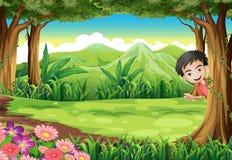 Ein lächelnder Junge, der Verstecken am Wald spielt vektor abbildung