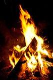 Ein Lagerfeuer, welches die Dunkelheit beleuchtet Stockbilder