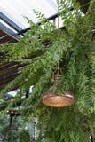 Ein Lampengarten Stockfoto