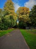 Ein Landschaftsweg lizenzfreies stockfoto