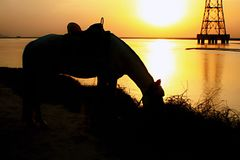 Ein langer Sonnenuntergang stockfoto