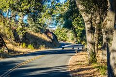 Ein langer Weg hinunter die Straße des Berggipfel-Nationalparks stockbilder