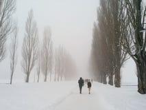 Ein langer Winterweg Stockfotos
