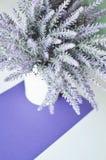 Ein Lavendelblumenstrauß in einem Vase auf einem Hintergrund des weißen Veilchens Stockbild