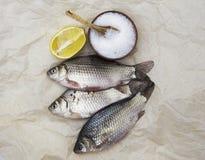 Ein lebender Fisch des frischen Karpfens, der auf a auf Papierhintergrund mit einem Messer und Scheiben der Zitrone und mit Salzd Lizenzfreies Stockfoto