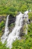 Ein lebhafter Wasserfall, der hinunter die Felsen in den Wald gestaltet durch Bäume fließt Stockfotos