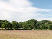 Ein leeres Bauernhoffeld mit Bäumen und Wolken an einem sonnigen Tag Lizenzfreie Stockbilder