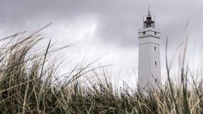 Ein Leuchtturm, der auf einem Gebiet des starken Grases steht Stockbild