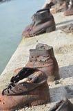 Ein levander in O-Schuh Stockfotos