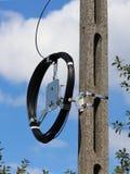 Ein Lichtwellenleiterkabelbaum für Kommunikation wiegt auf einer konkreten Spalte Telekommunikation und Internet Reparieren Sie A lizenzfreies stockfoto