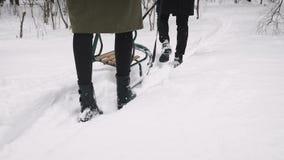 Ein liebevolles Paar geht im Wald mit Schlitten stock video