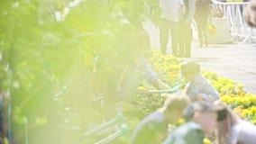 Ein Loch und das Pflanzen der Birne graben stock footage