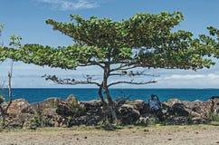 Ein lokaler eingeborener Mann unter dem Baum am schwülen Tag stockfoto