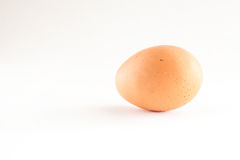 Ein lokalisierter weißer Hintergrund des braunen Eies Lizenzfreie Stockfotos
