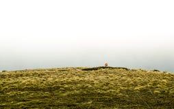 Ein lonelu freier Mann am Ende der Welt mit Rucksack in den Bergen Stockbilder