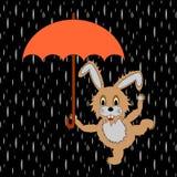 Ein lustiges Kaninchen mit Regenschirm im Regen Stockfoto