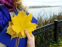 Ein Mädchen, das auf ein Ufer hält ein Buch geht Lizenzfreie Stockfotografie