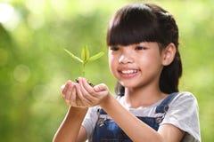 Ein Mädchen, das eine Jungpflanze in ihren Händen mit einer Hoffnung der guten Umwelt, selektiver Fokus auf Anlage hält stockbilder