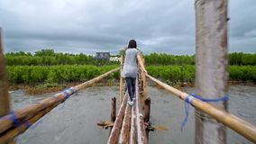 Ein Mädchen, das an einem regnerischen Tag auf einer Bambusbrücke geht stock video