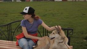 Ein Mädchen, das einen Hund streicht stock video