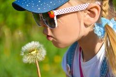 Ein Mädchen in der Sonnenbrille auf dem Gebiet brennt stark an einem Blumenlöwenzahn, Nahaufnahme, Sommer durch Stockfoto