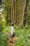 Ein Mädchen in einem Poncho und in einem Hut im Wald Lizenzfreie Stockbilder