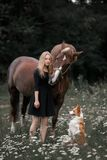 Ein Mädchen geht auf einem Gebiet mit einem Hund und einem Pferd lizenzfreie stockfotografie
