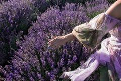Ein Mädchen geht auf einem Lavendelgebiet im Sommer stockfotografie