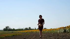 Ein Mädchen geht entlang ein Feld mit blühenden gelben Sonnenblumen an einem sonnigen Sommertag Landwirtschaft, Wachsen und Produ stock footage