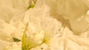Ein Mädchen im Paradies Schöne Blume Leichte Atmosphäre stock video