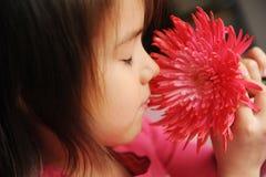 Ein Mädchen mit einer Blume Lizenzfreie Stockbilder
