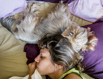 Ein Mädchen schläft zusammen mit einem Hund im Bett Lizenzfreie Stockfotografie