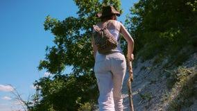 Ein Mädchenreisender mit einem Rucksack und einem hölzernen Stock geht entlang einen Weg, der auf einer steilen Steigung in den B stock video